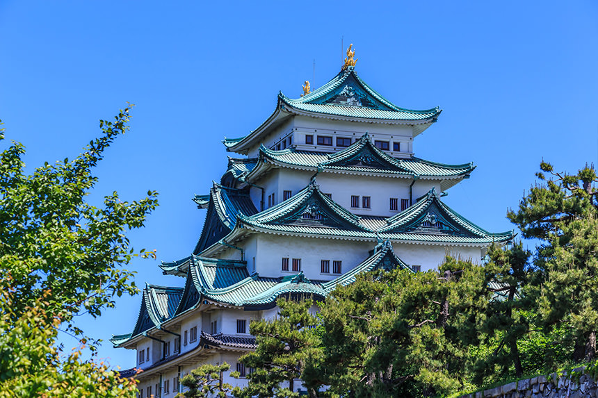 Nagoya Castle & Inuyama Castle's photo