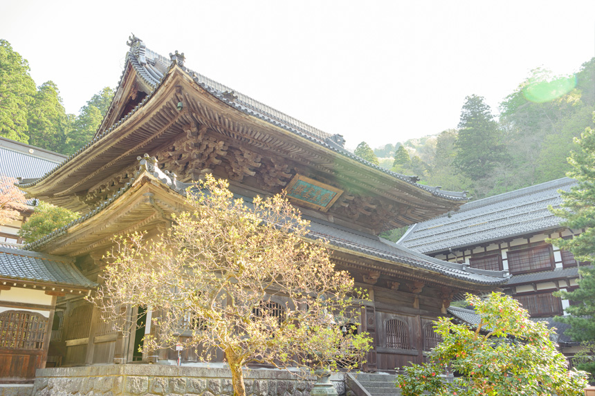 Eiheiji Temple's photo