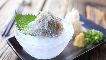 Shirasu-don (rice topped with small sardines)