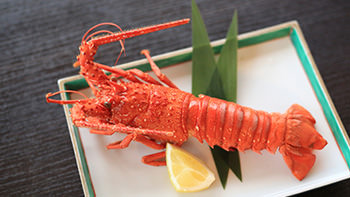 Ise-ebi spiny lobster